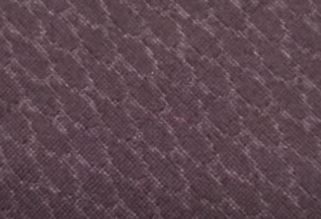 ウロコスキンの表面